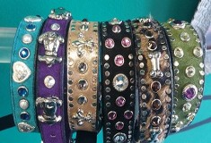 Collars - Pet Boutique